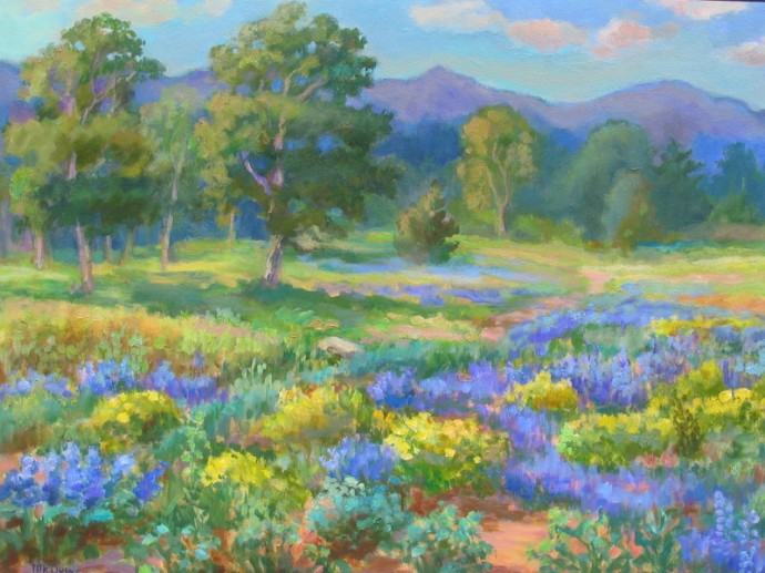 "Colorado Wildflowers - 22"" x 28"""